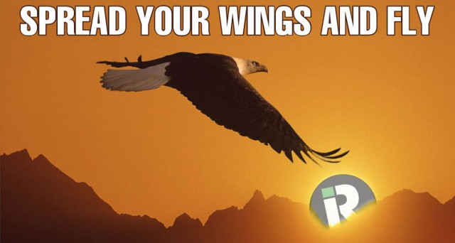 b2ap3_medium_b2ap3_large_Spread-Your-Wings-Fly-Blog Spread Your Wings and Fly! | inventRight Blog Licensing Success Stories